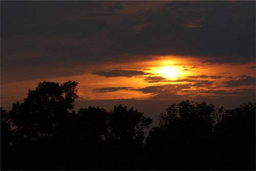 trees sunset red sky orange cloud sun clouds florence skies purple kentucky sony silhoutte a300