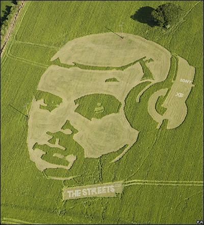 Art in the Landscape Crop Circles