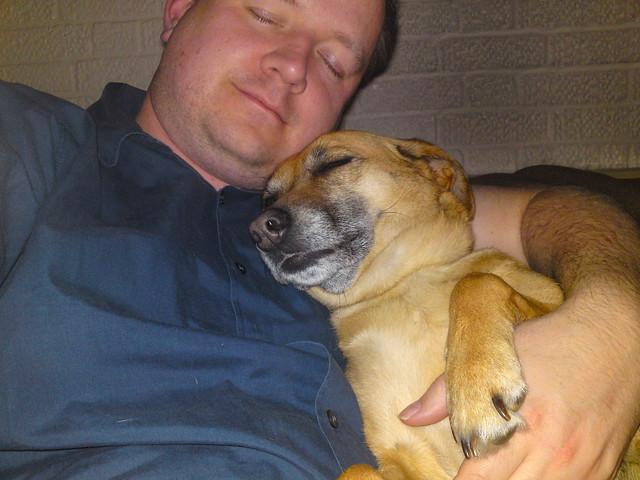 dsc00230 - Let Sleeping Dogs Lie