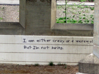 I'm not boring | by shanon wise