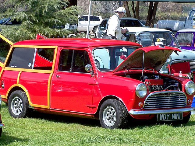 Woody Mini 3