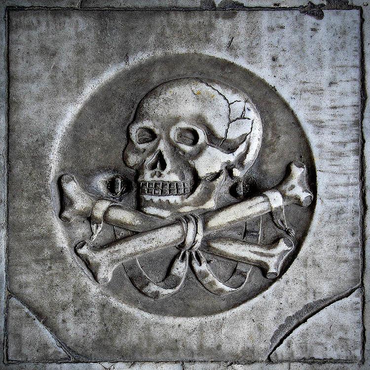 ... skulls and bones #2 ...