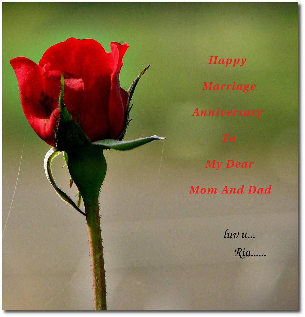 Happy marriage anniversary to my dear Mom and Dad | Today is