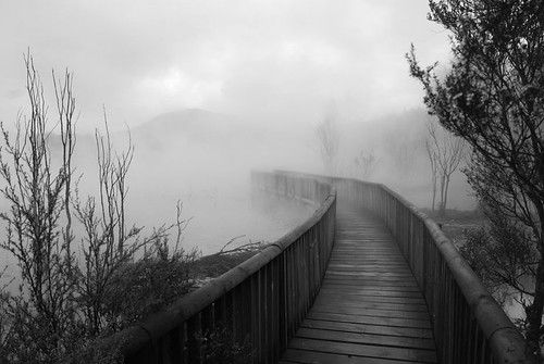 Bridge in the Fog - Rotorua, New Zealand | by Heike_Quosdorf
