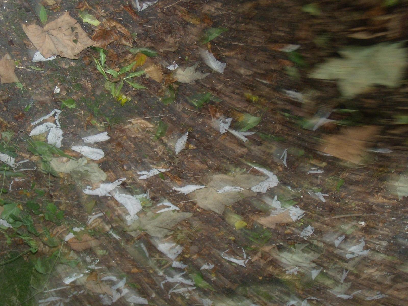 Leaves Wendover Circular