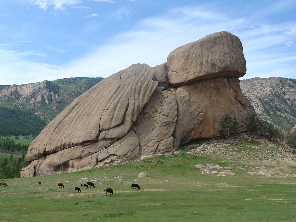 Risultato immagini per turtle rock mongolia