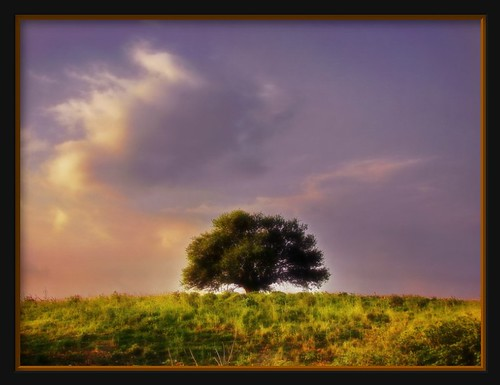 blue sunset shadow red sky sun white mountain tree green nature grass leaves yellow clouds golden countryside flickr shadows purple sony country greece hour h2 dsc kostas korpi monastiraki dsch2 aplusphoto theunforgettablepictures etoloakarnania harilogis korpisprings