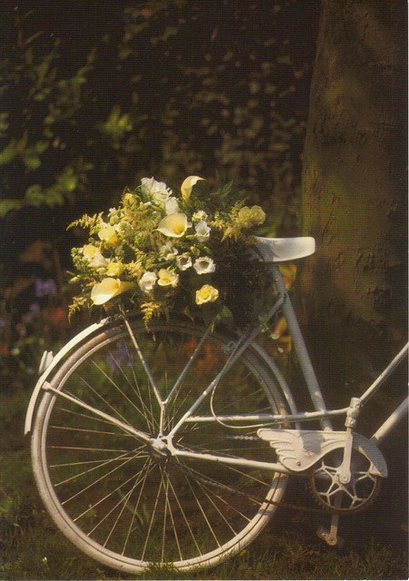 Bicycle with Flowers Postcard