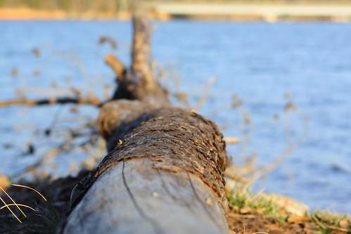 water nc northcarolina alexandercounty lakehickory davidhopkinsphotography