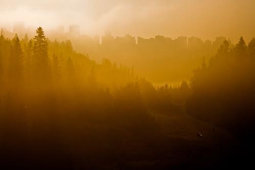 park morning trees fog skyline sunrise dawn haze downtown edmonton alberta valley ravine mackinnon rivervalley parkland mackinnonravine