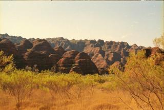 The Bungles | by mathias is still around