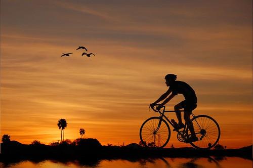 bike bicycle backlight sunrise bicycling cycling biking sillouette mywinners acinematicworld