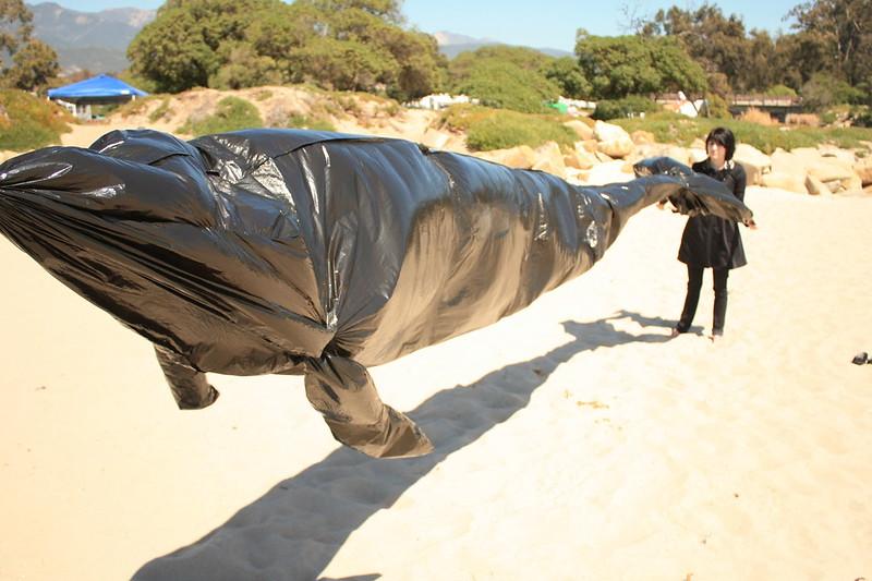 Bertrand: Air Whale.