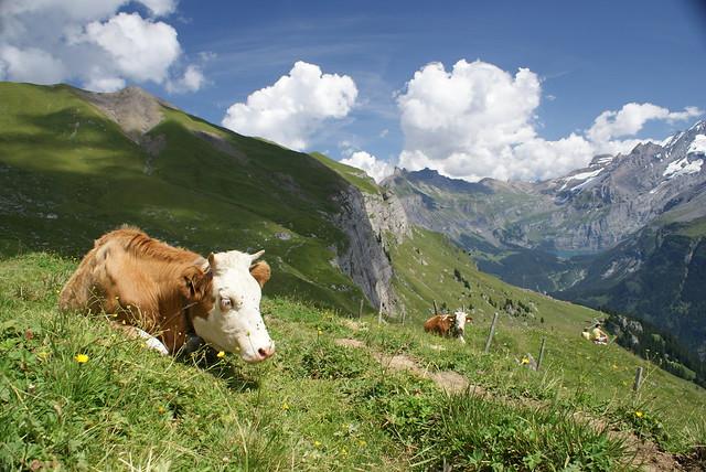 Above Kandersteg