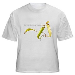 Watercolor Nepenthes with wording T-Shirt | by The World Through Athene's Eyes