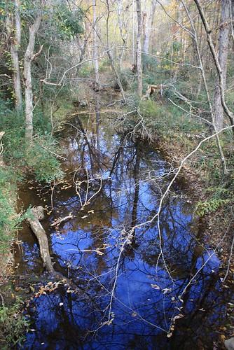 fall reed gold mine northcarolina 08 cabarrus reedgoldmine