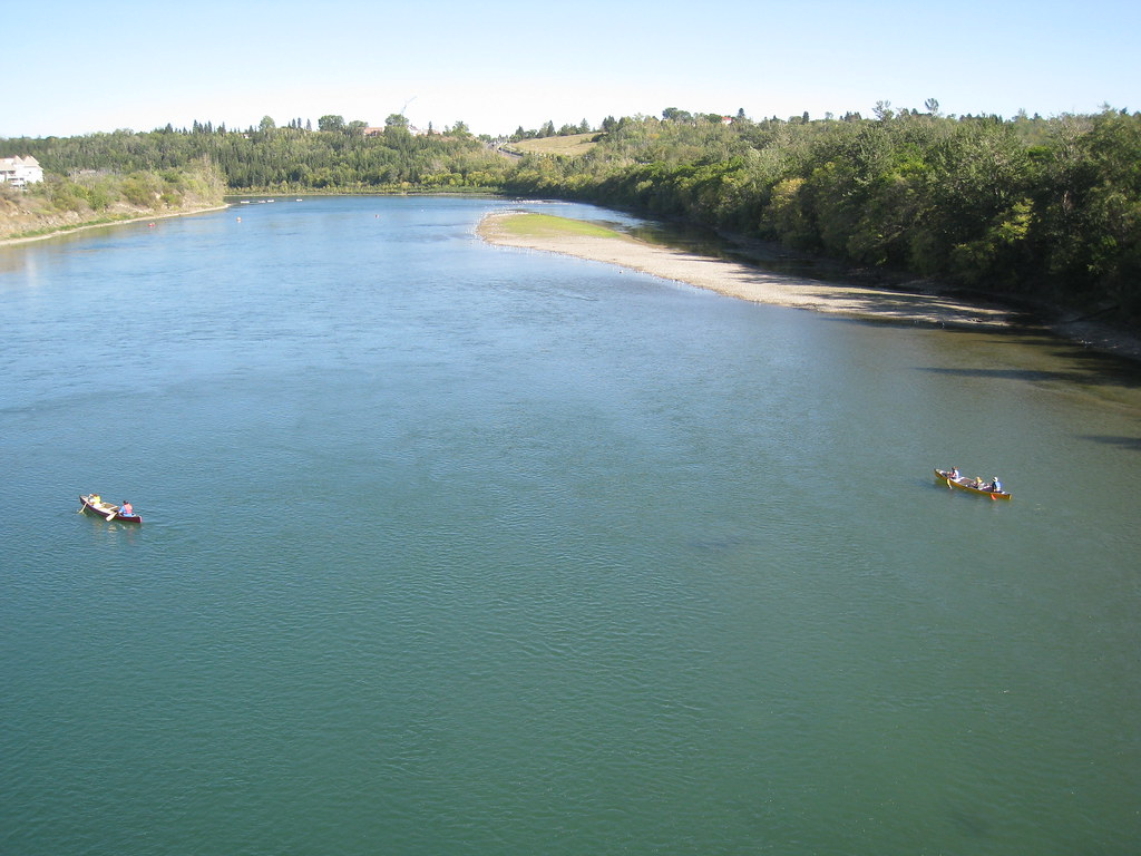 The North Saskatchewan River is healthier than you might think