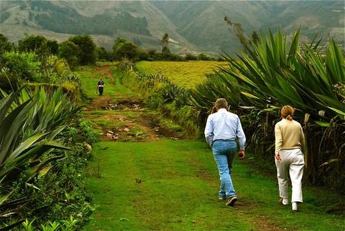 ecuador-organic-farming