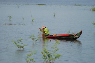 Woman fishing on the Tonle Sap lake, Cambodia
