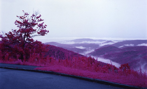 trees mountains fog rural landscape scenic northcarolina infrared distance