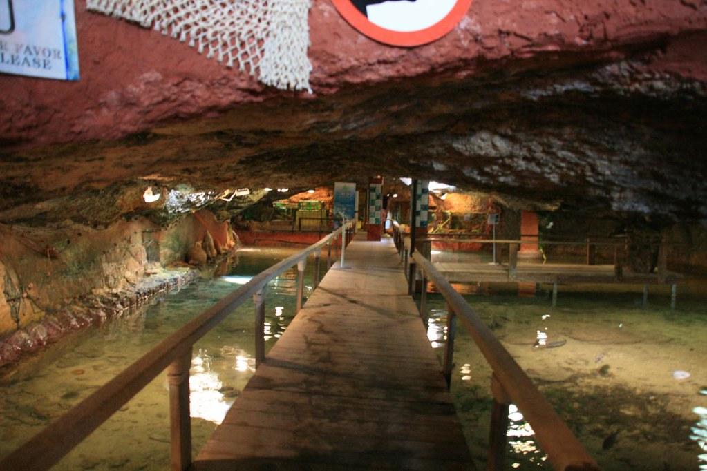 A click inside Aquarium Cap Blanc