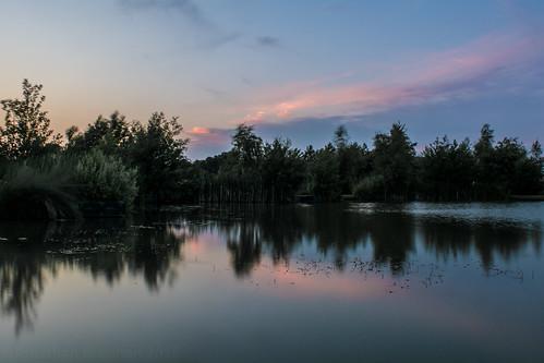 northalafields northoltandgreenfordcountrypark park countrypark pond water reflection sunset dusk twilight northolt middlesex londonboroughofealing london england uk unitedkingdom nikon d7100 nikond7100