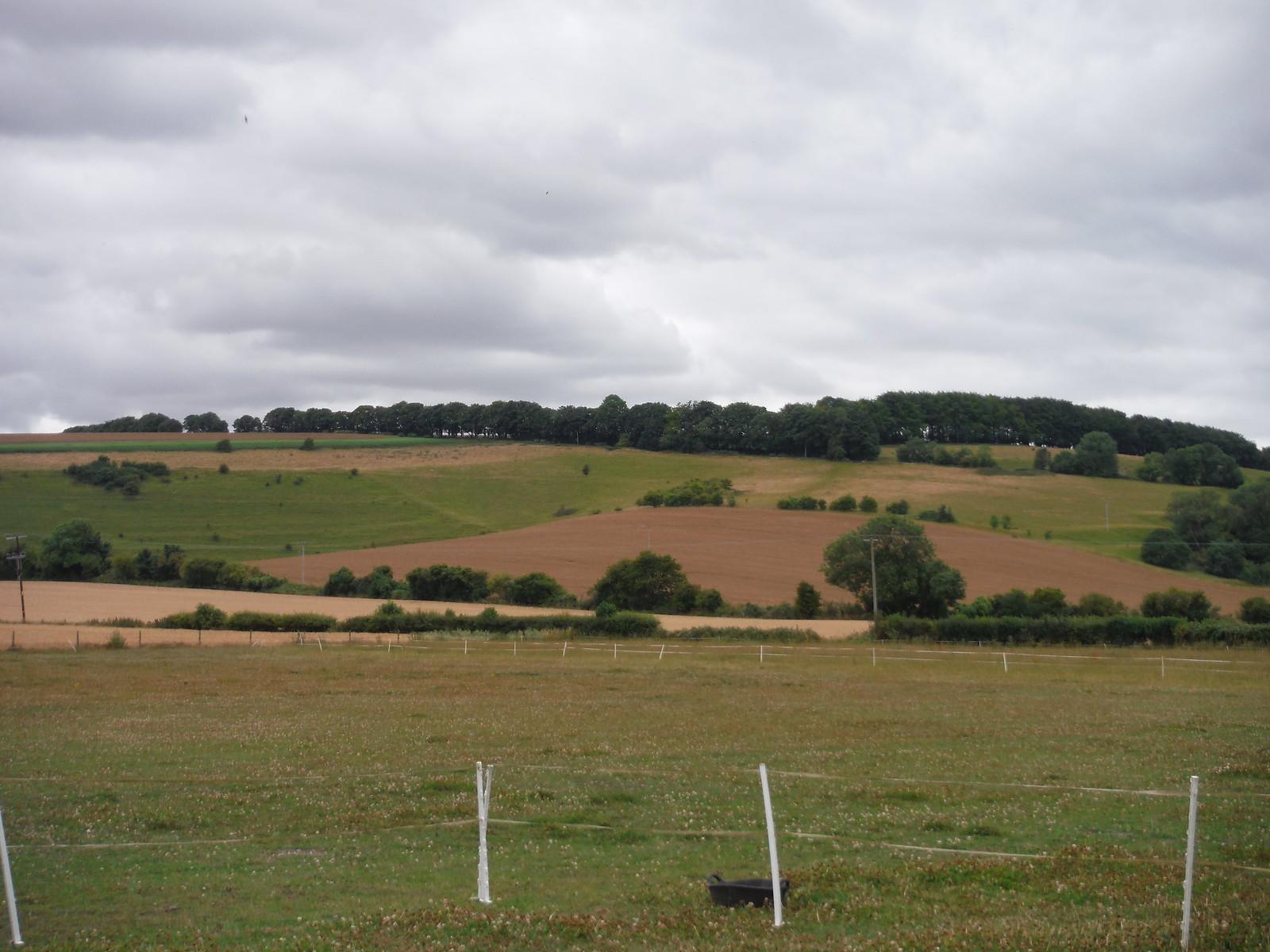 Knighton Hill SWC Walk 254 Salisbury Circular