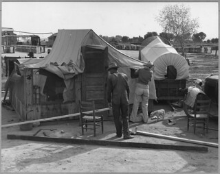 Chandler, Maricopa County, Arizona. Cotton Pickers Improving Their Housing, From Santa Ana, Coleman County, Texas