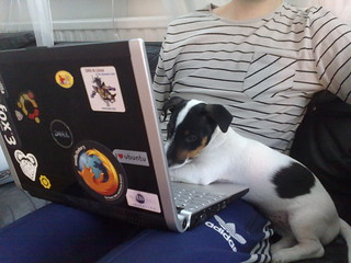 Theo helping out with some coding | by Johan Nilsson