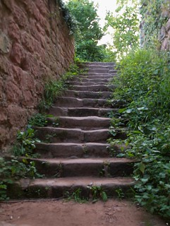 Treppe zum Drachenfels | by tuxbrother