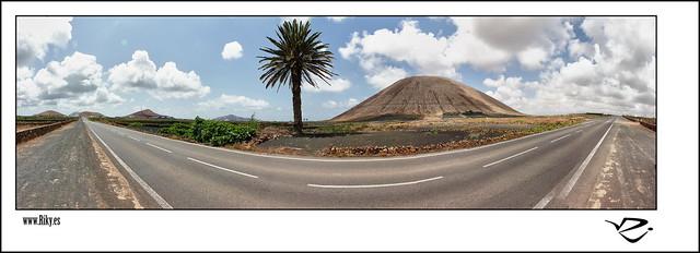 :: Palmera y Volcan ::
