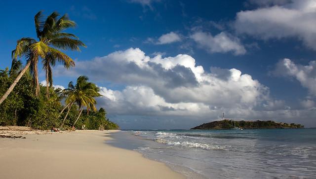 plage près des salines- Martinique