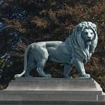 Leone del cancello della residenza reale