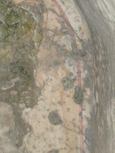 tratto di affresco della cappella di San Rocco a Pazzano