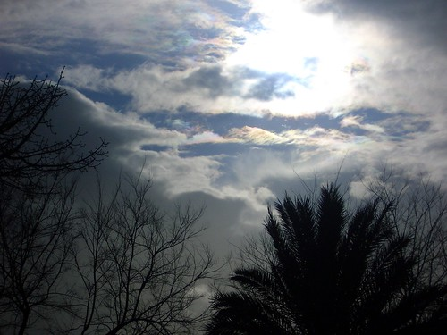 Its cloud illusions I recall | Bows and flows of angel ...
