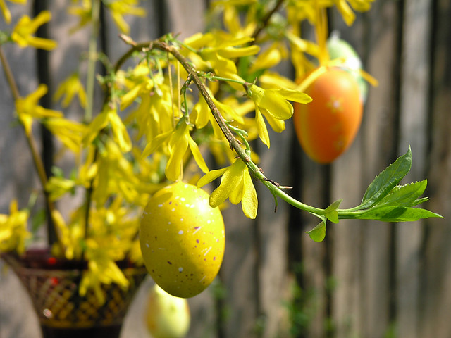 Easter egg macro 2