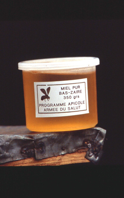 Bas-Congo honey
