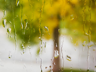 My window weeps for the end of summer   by photogramma1