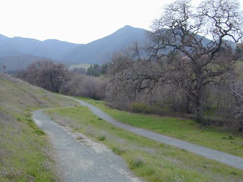 Trail Wilderness