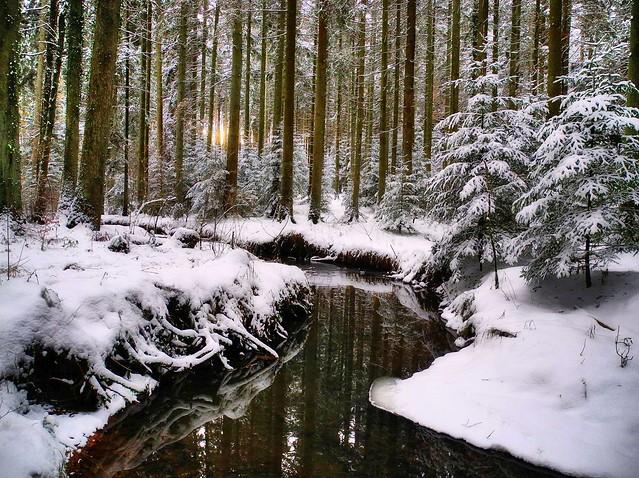 Naturschutzgebiet Eisenbach