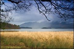 Derwent Water Grass View | by Gary Robson.