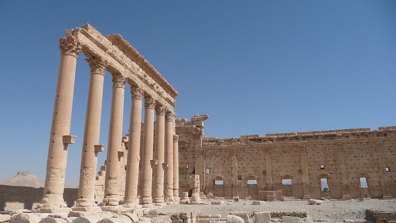 Palmyra 244