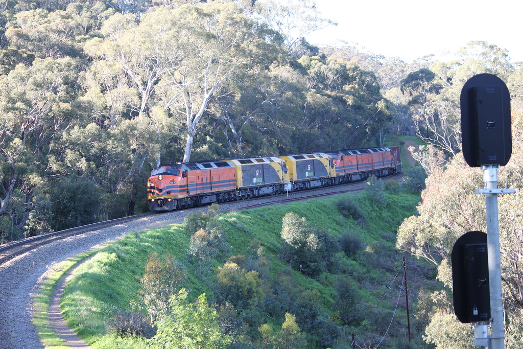 IMG_5069 by Todd Hutchison