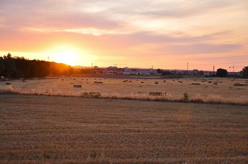 españa sunrise landscape countryside spain nikon scenery shell e landschaft sonnenaufgang 2009 jakobsweg 00 spanien caminodesantiago sunup muschel d90 thewayofstjames caminofrancés lechemindesaintjacques nullnullminus nikkorafs1685f3556 gpsunitgp1