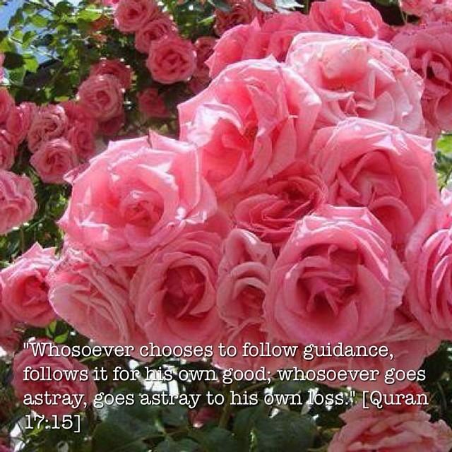 Anaani27 Anideen27 Bbowl27 Quran Tafsir Quote Dakwa Flickr