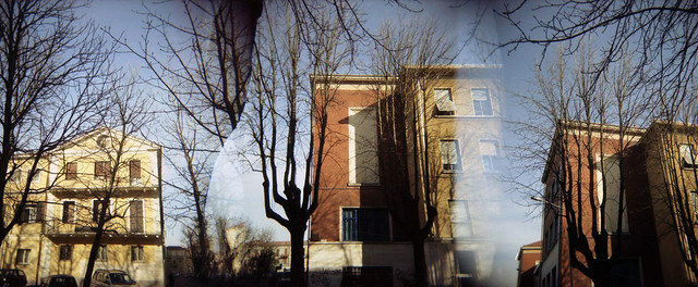 lomo holga 120 : life without love and 'like a tree leaf that has no more'