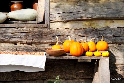 stilllife fall nature gourds canon landscape eos natural pumpkins grain iowa september logcabin ia urbandale livinghistoryfarms 50d bej mywinners abigfave canon50d platinumphoto platinumheartaward goldstaraward don3rdse photographerday 1850farm