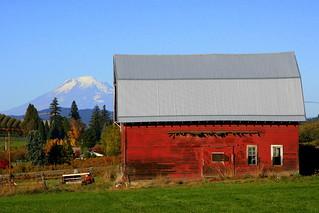red barn, blue sky, green grass | Hood River Valley ...