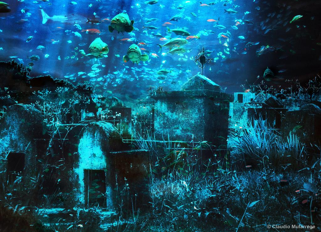 The waters of oblivion / Las aguas del olvido by Claudio.Ar