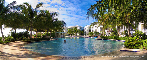 trees pool marina keys key florida pano panoramic palm resort villa mariners caribbean fl largo luxury villas floridakeys keylargo mariner marinas keyscaribbean